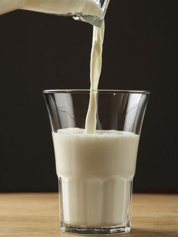 dairy (12)