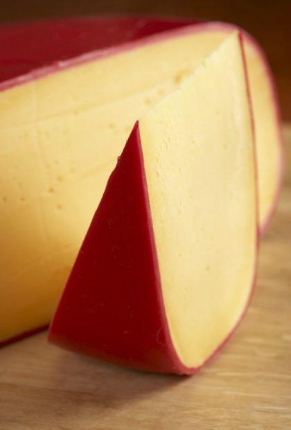 dairy (8)