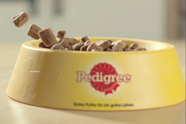 7.Pedigree dogfood